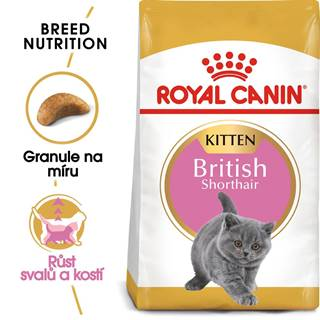 RC cat  KITTEN BRITISH shorthair - 400g