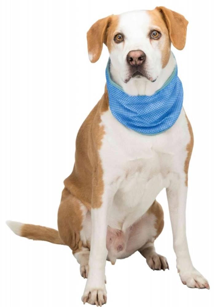 Trixie Trixie dog CHLADIACA ŠATKA - S / 20-30cm