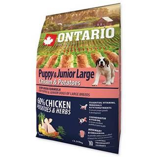 ONTARIO dog JUNIOR LARGE chicken - 2.25kg