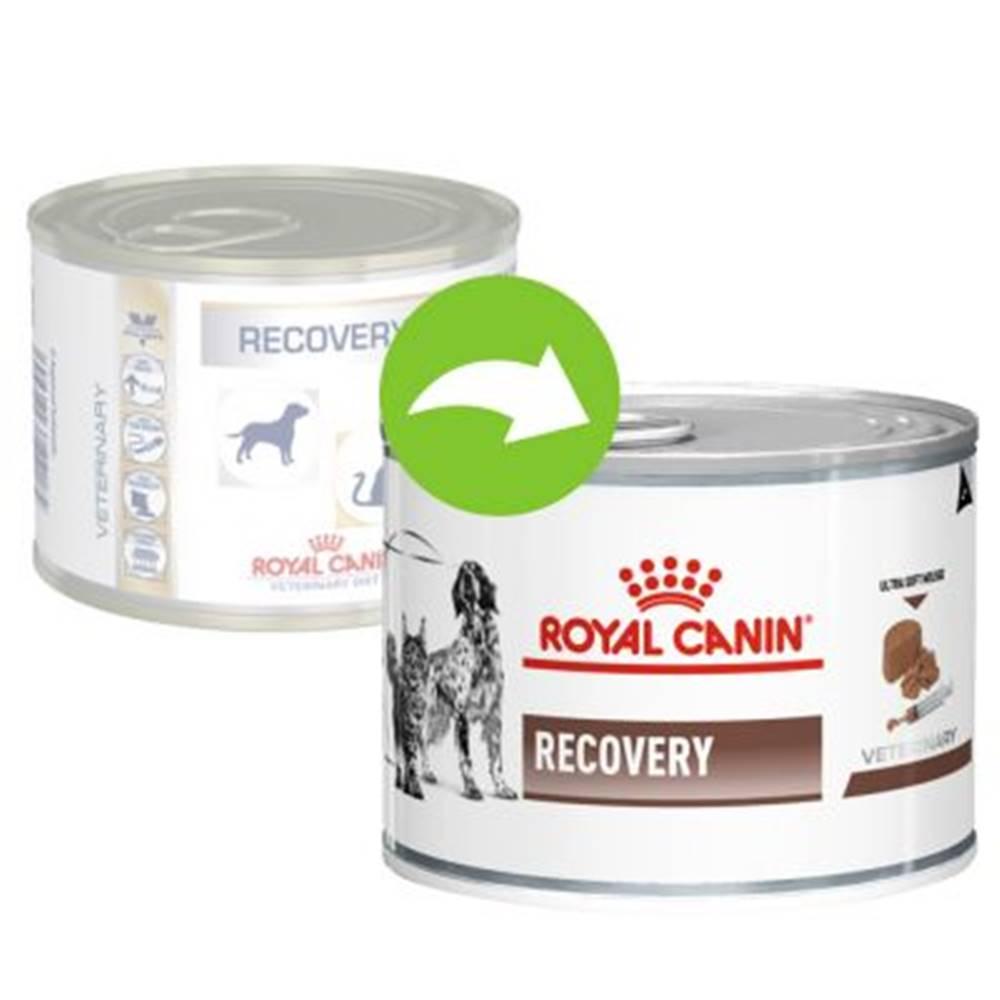 Royal Canin Royal Canin/ Feline Veterinary Diet RECOVERY konzerva - 195g