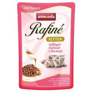 Animonda cat kapsa Rafiné KITTEN 100g - hydina/krevet