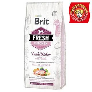 BRIT FRESH PUPPY chicken/potato - 2,5kg