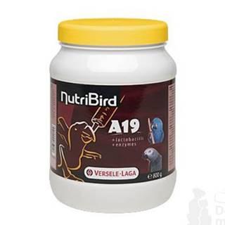 Versele Laga Krmivo pro papoušky NutriBird A 19 HE dokrm 800g