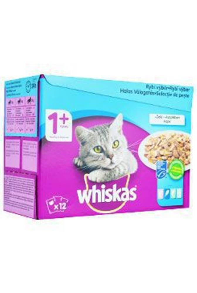 Whiskas Whiskas kapsa Rybí výběr ve želé 12x100g